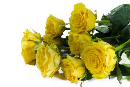 bouquet of yellow roses on white Stock Photo - 2754225
