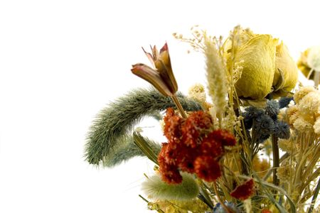 close-up of dried bouquet  photo