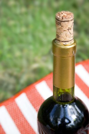 bottle of wine over green grass photo