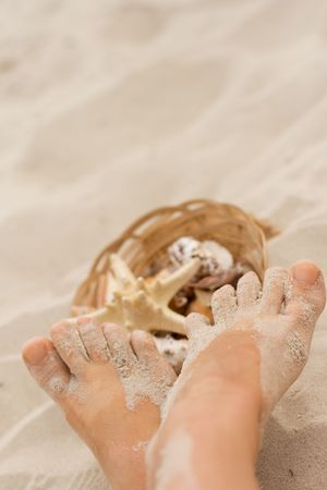 feet and basket of shells on sand  photo
