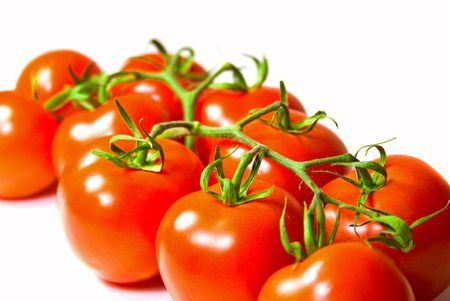 brunch of  fresh tomatoes om white background photo