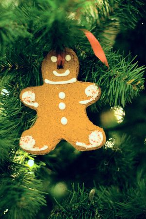 gingerbread man in the christmas tree Stock Photo - 3917353