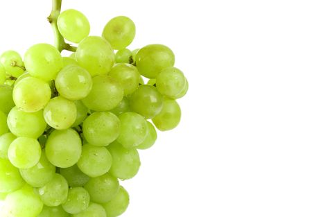 green grapes closeup on white background photo