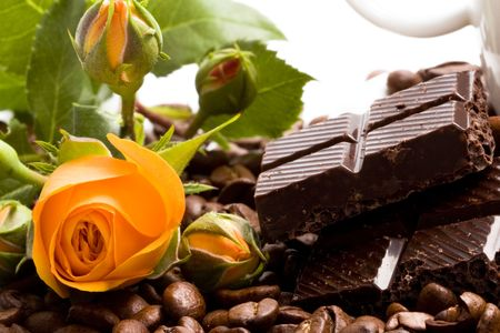 chocolate, coffee, cinnamon sticks and yellow flower closeup photo