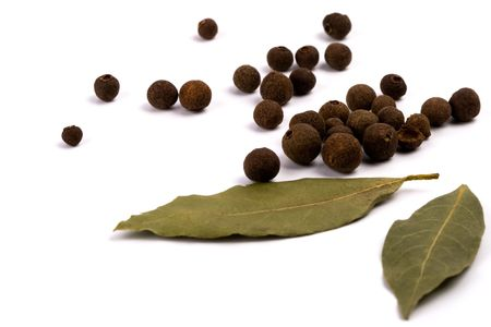 black peppercorn: aromatic pepper and bay leaves on white background