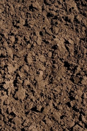 black soil: soil background