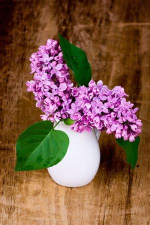 lilac blooms in small white vase on wooden table photo
