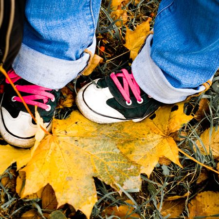 hiking shoes over yellow leaves - closeup image photo