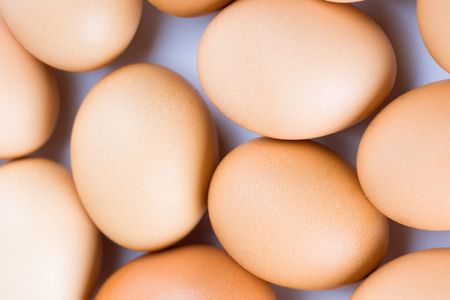 brown eggs background photo