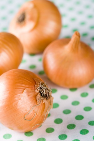 closeup of ripe onions on textile background photo