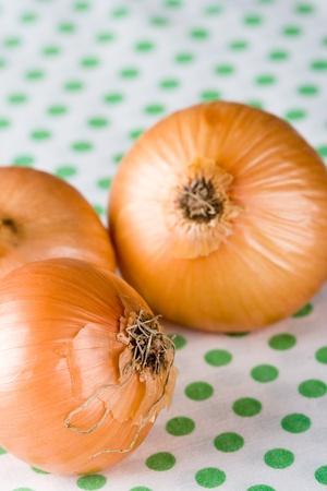 fresh onions on textile background photo