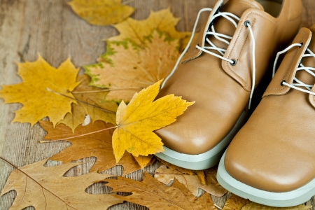 pair of biege leather shoes and yellow leaves on an old wooden floor  Stock Photo - 15266050