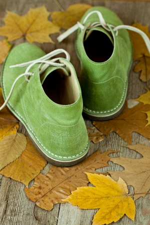 pair of green leather boots and yellow leaves on an old wooden floor  Stock Photo - 15593805