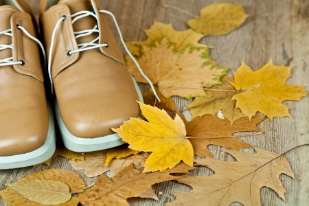 pair of biege leather shoes and yellow leaves on an old wooden floor Stock Photo - 15870874