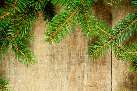 christmas fir tree on rustic wooden board photo