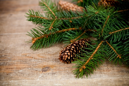 christmas fir tree with pinecones on a wooden board photo