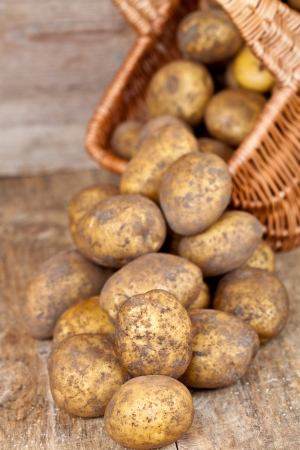 basket with fresh potatoes on rustic wooden background  photo
