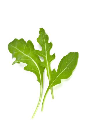 rocket lettuce: fresh rucola leaves isolated on white background