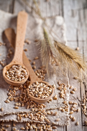 wheat grain in wooden spoons and ears closeup on rustic wooden board photo