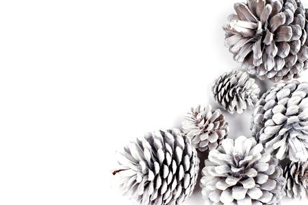White decorative pine cones closeup on a white background.