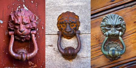 Lion shaped door knockers collection
