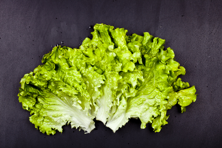 Green organic lettuce salad leaves on black background. Top view on black background. Zdjęcie Seryjne - 121869921