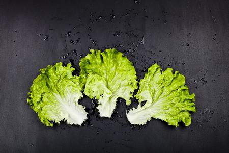 Green organic lettuce salad leaves on black background. Top view on black background. Zdjęcie Seryjne - 121869957