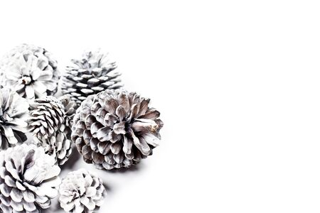 White decorative pine cones closeup on a white background. With copy space. Stockfoto