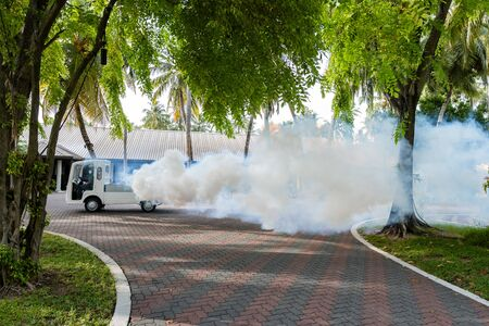 Insects are poisoned on a tropical island. Big clouds of smoke fly out of the car
