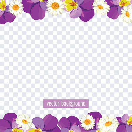 Floral borders on transparent background. Vector illustration. Pansies and camomiles for your spring or summer design. Vector illustration.