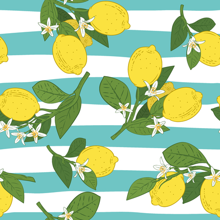 Seamless pattern of branches with lemons, green leaves and flowers on blue. Citrus fruits background. Vector illustration. Illustration