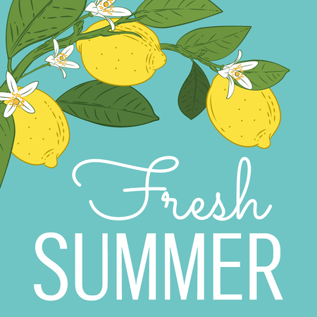 Tropical citrus lemon fruits bright summer card. Poster with lemons, green leaves and flowers on turquoise blue. Summer colorful background. Vector illustration.