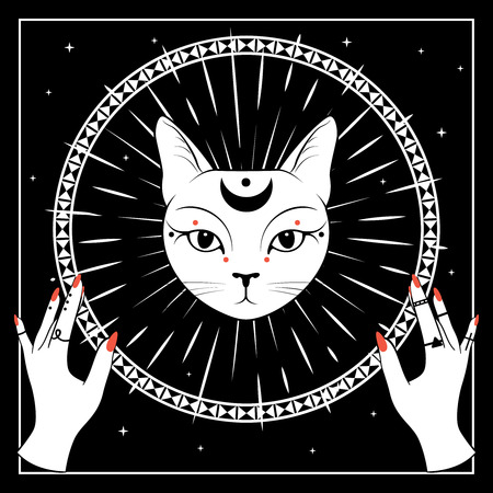 White cat face with moon on night sky with ornamental round frame. Hands with rings. Magic, occult symbols. Vector illustration.