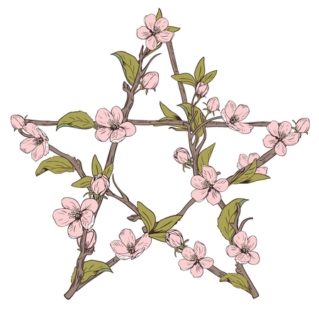 Pentagram sign made with branches from a blooming tree. Hand drawn botanical pink blossom on white background. Vector illustration.