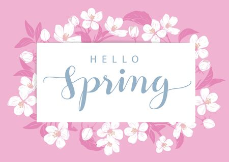 Cherry blossom card template with text hello Spring. Floral frame on pink background. White flowers. Vector illustration.