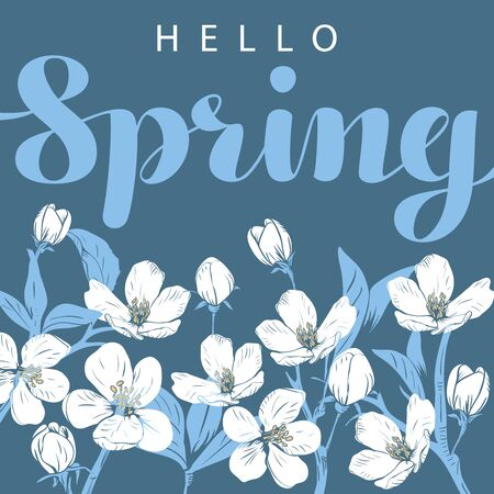 Cherry blossom with hello Spring lettering on a blue background. Vector illustration. Иллюстрация