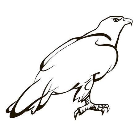 keen: sitting eagle