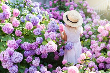 Het meisje is in struiken van hortensiabloemen in zonsondergangtuin. Bloemen zijn roze, blauw, lila, lavendel en bloeien in de straten van de stad. Kid is in roze jurk, strohoed. Concept van kindertijd, tederheid. Stockfoto