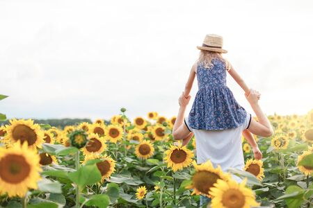 Father and daughter have fun in sunflowers field. Kid sits on daddys shoulders on summer holiday. Child girl and man are family.