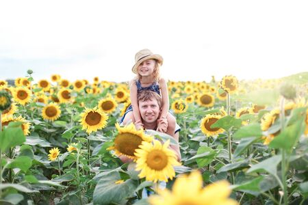 Father and daughter have family fun in sunflowers field. Happy kid sits on daddys shoulders on summer holiday. Child girl and man are smiling together. Concept of happiness and enjoying life. 写真素材