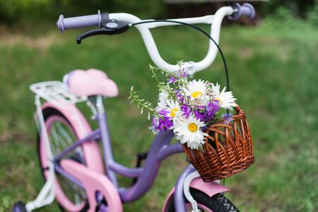 Children bicycle with wicker basket with summer bouquet in backyard garden. Female bike with chamomile and pink, lilac flowers bells. 写真素材