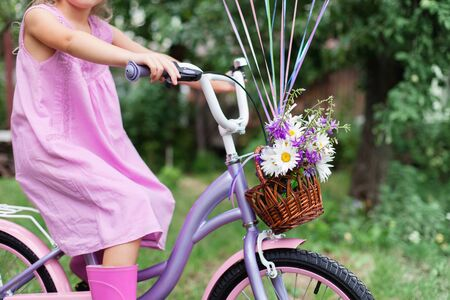 Kid is riding on lilac bicycle with wicker basket with bouquet of summer flowers. Little girl is wearing in pink dress and rubber boots. Child is playing in backyard garden.