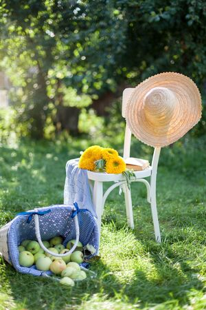 Summer scene with wooden white chair in sunny garden. Straw hat, sunflowers, book and overturned basket of apples lie on green grass. 免版税图像