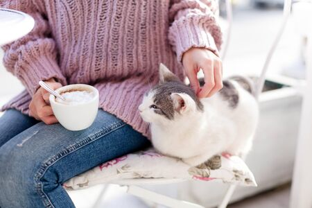 Young woman and cat sitting in cafe. Girl drinking coffee and stroking pet outdoors at city streets. 免版税图像