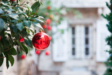Red Christmas balls and ornaments on branches of tree. Background with stone house, white window, wooden shutters in european streets of old town. Cozy authentic yard.