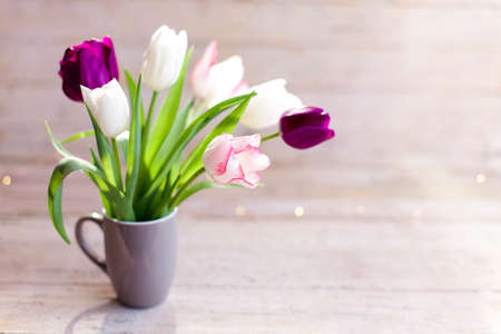 Tulips at wooden background. Spring flowers in gray cup. Bouquet in vase. Pink, white, lilac and purple blooming flora in sunshine. Cozy still life. Copy space.