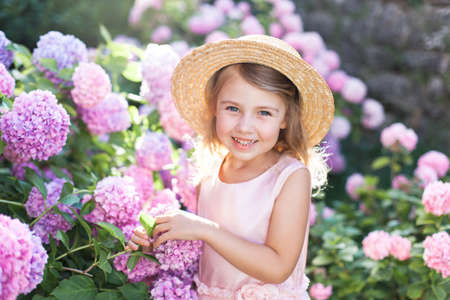 Little girl smiles in bushes of hydrangea flowers in sunset garden. Pink, blue, lilac flowers are blooming by country house. Kid is in pink dress, straw hat. Romantic concept of tenderness, childhood.
