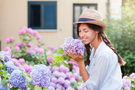 Gardening in bushes of hydrangea. Girl smiles in sunny summer country garden. Flowers are pink, blue and blooming in town street by house. Woman in straw hat is gardener and florist. Banco de Imagens