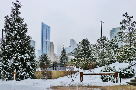Winter Chicago cityscape with downtown skyscrapers in a mist and trees covered by fresh snow on a foreground. 版權商用圖片