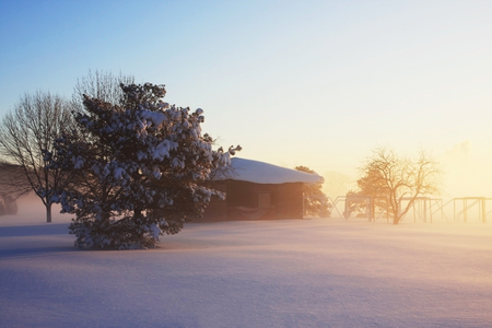 Beautiful winter misty morning landscape with rising sun light over covered by fresh snow field and trees. Фото со стока